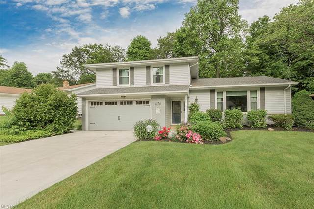 1648 Windsor Drive, Mayfield Heights, OH 44124 (MLS #4288100) :: The Holden Agency