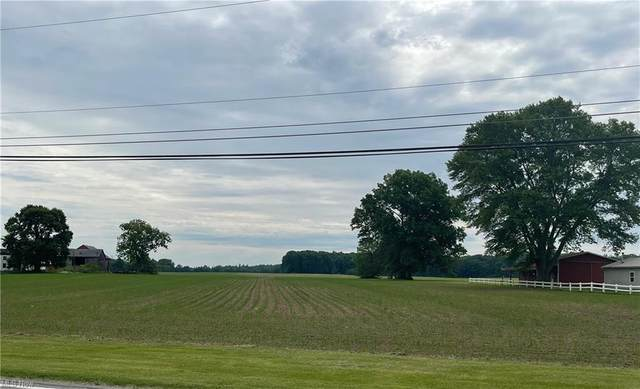 State Route 534, Newton Falls, OH 44444 (MLS #4288130) :: TG Real Estate