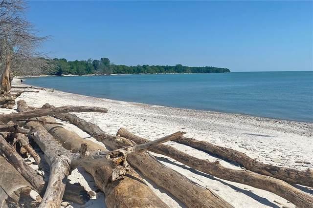 123 Mary Ann Lane, Kelleys Island, OH 43438 (MLS #4288321) :: Simply Better Realty