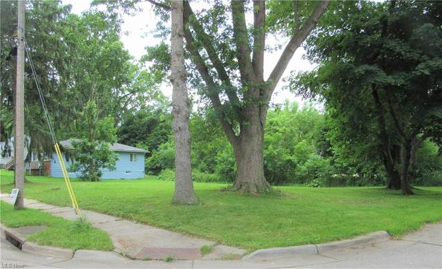 1044 Yukon Avenue, Akron, OH 44320 (MLS #4288416) :: The Holly Ritchie Team