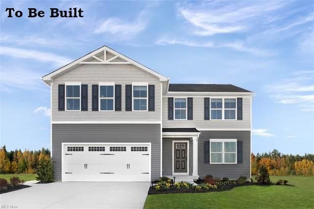 360 Roberta Drive, Painesville Township, OH 44077 (MLS #4289148) :: Tammy Grogan and Associates at Keller Williams Chervenic Realty