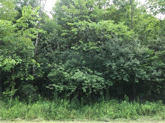 Greenville, Cortland, OH 44410 (MLS #4289265) :: The Holden Agency