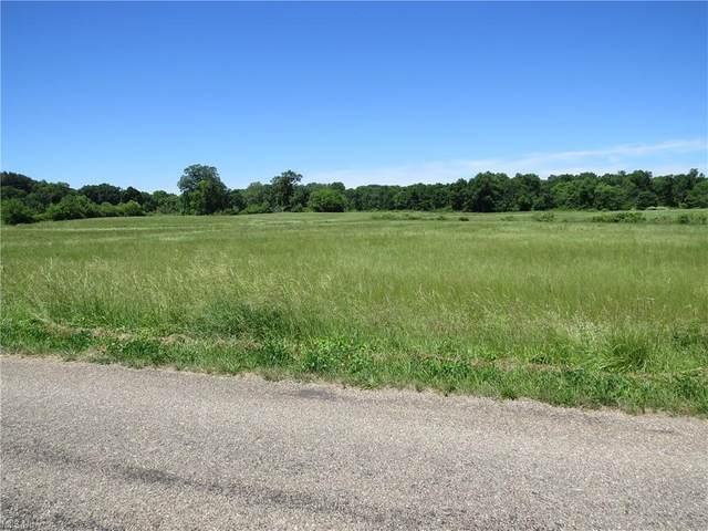 Bellflower Road, Minerva, OH 44657 (MLS #4289317) :: The Art of Real Estate