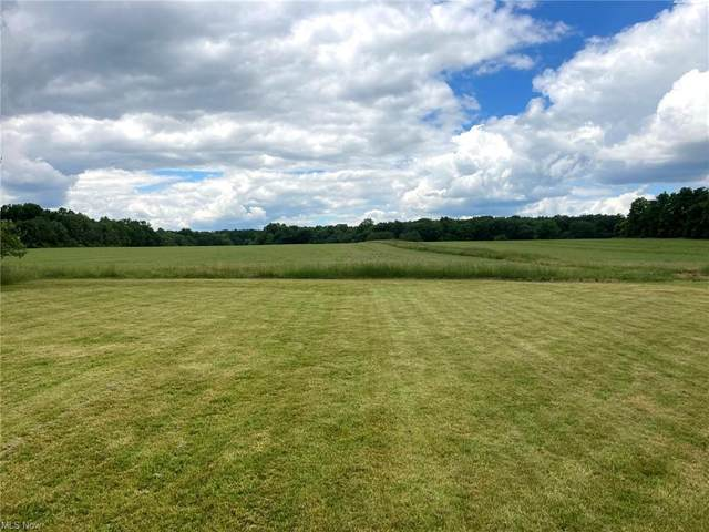 State Route 183, Atwater, OH 44201 (MLS #4289450) :: RE/MAX Trends Realty