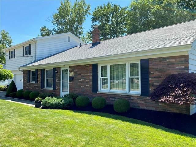 766 Robin Drive, Eastlake, OH 44095 (MLS #4289538) :: TG Real Estate