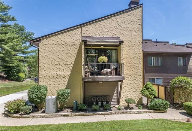 651 Hampton Ridge Drive, Akron, OH 44313 (MLS #4289541) :: RE/MAX Edge Realty