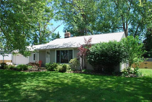 37646 Green Drive, Eastlake, OH 44095 (MLS #4289945) :: Tammy Grogan and Associates at Keller Williams Chervenic Realty