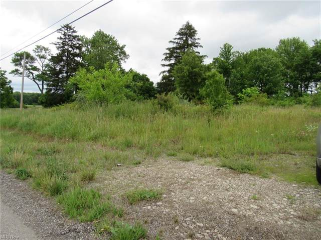 State Route 301, Lagrange, OH 44050 (MLS #4290361) :: RE/MAX Edge Realty