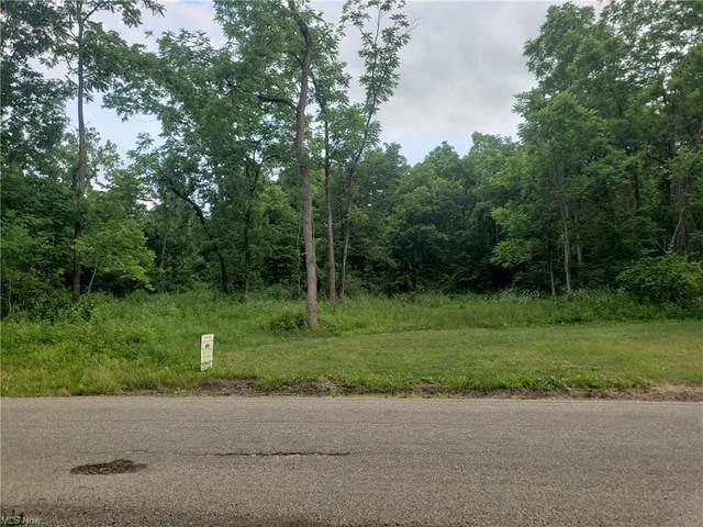 Crock Road, Zanesville, OH 43701 (MLS #4290442) :: TG Real Estate