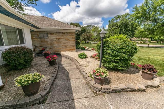 3130 Monticello Boulevard, Cleveland, OH 44118 (MLS #4290463) :: The Jess Nader Team   REMAX CROSSROADS
