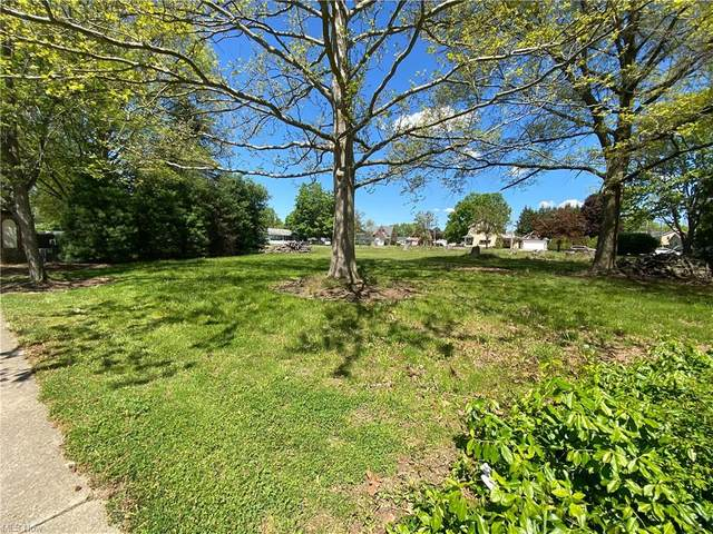 N Wooster Avenue, Dover, OH 44622 (MLS #4290560) :: The Jess Nader Team | RE/MAX Pathway