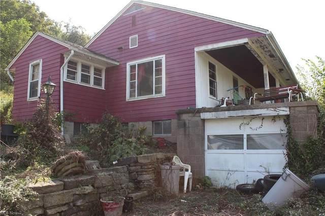 1001 Minellen Drive, Bridgeport, OH 43912 (MLS #4291298) :: Tammy Grogan and Associates at Keller Williams Chervenic Realty