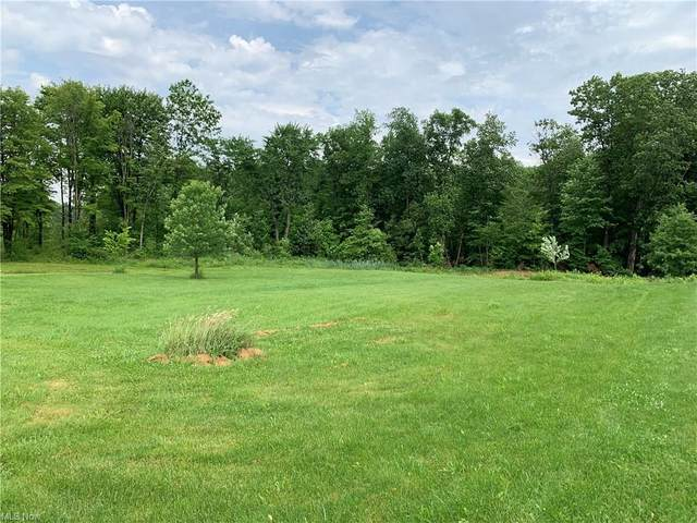 3600 Polo Boulevard, Poland, OH 44514 (MLS #4292189) :: The Holly Ritchie Team