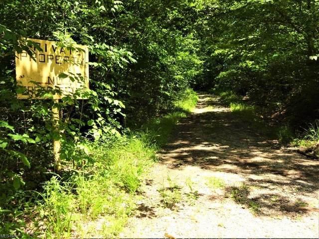 3874 Mt Olive Ridge Road, Belleville, WV 26133 (MLS #4292498) :: TG Real Estate