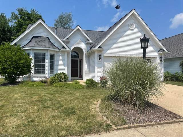 14213 Placid Cove, Strongsville, OH 44136 (MLS #4292572) :: The Holden Agency