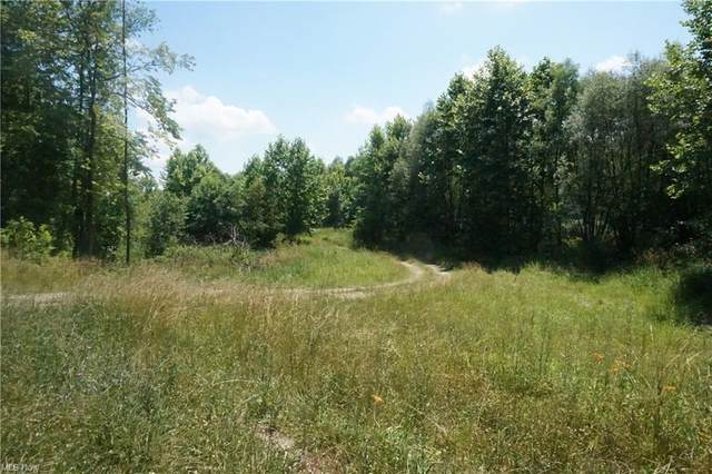 State Route 60, Millersburg, OH 44654 (MLS #4293465) :: The Jess Nader Team | REMAX CROSSROADS