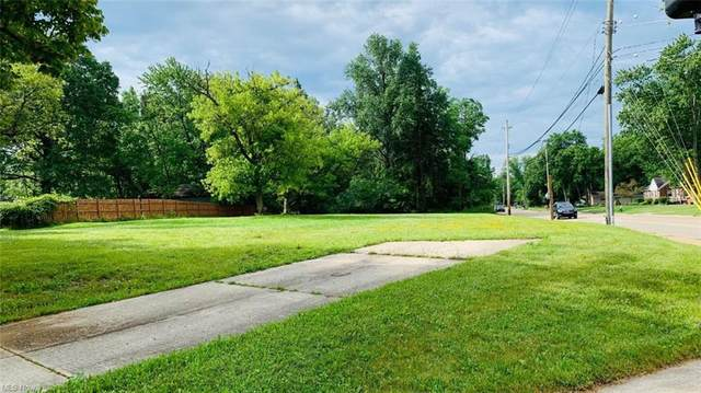 27099 Cook Road, Olmsted Township, OH 44138 (MLS #4294770) :: RE/MAX Trends Realty