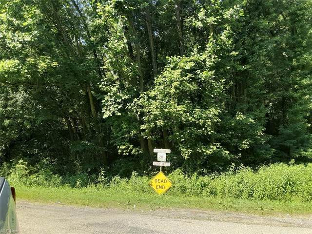 State Route 669, McConnelsville, OH 43756 (MLS #4294859) :: TG Real Estate