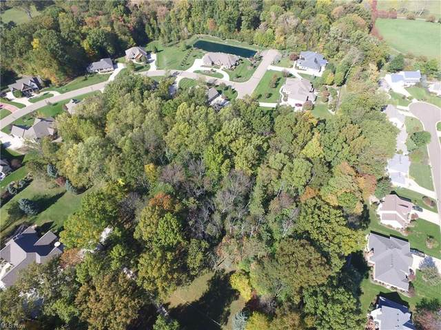 Hills And Dales Road NW, Canton, OH 44708 (MLS #4295015) :: The Kaszyca Team