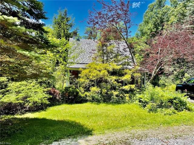 9356 Brandywine Road, Sagamore Hills, OH 44067 (MLS #4295230) :: Tammy Grogan and Associates at Keller Williams Chervenic Realty