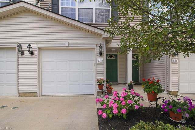3783 Freedom Place, Lorain, OH 44053 (MLS #4295285) :: Vines Team
