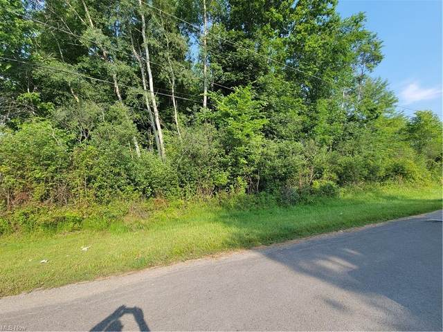 Kingsville Way, Roaming Shores, OH 44084 (MLS #4295551) :: The Art of Real Estate