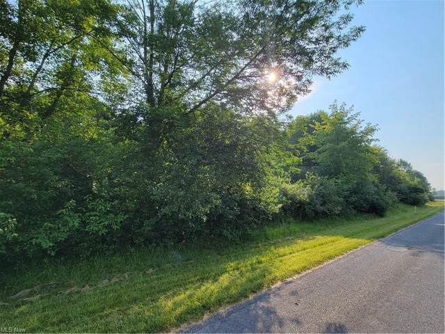 Sugar Creek Drive, Roaming Shores, OH 44084 (MLS #4295793) :: The Holly Ritchie Team