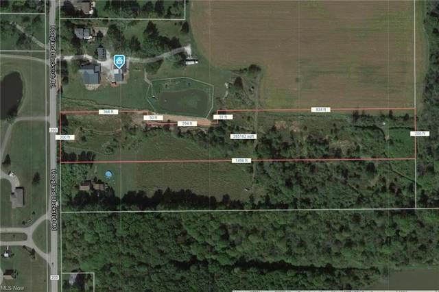Hoagland Blackstub, Cortland, OH 44410 (MLS #4295798) :: The Art of Real Estate