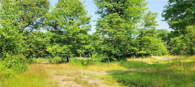 11005 Brass Road, Mineral City, OH 44656 (MLS #4296380) :: Select Properties Realty