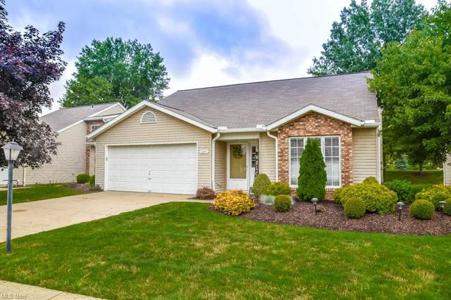 10645 Stapleton Drive, Strongsville, OH 44136 (MLS #4296528) :: The Holly Ritchie Team