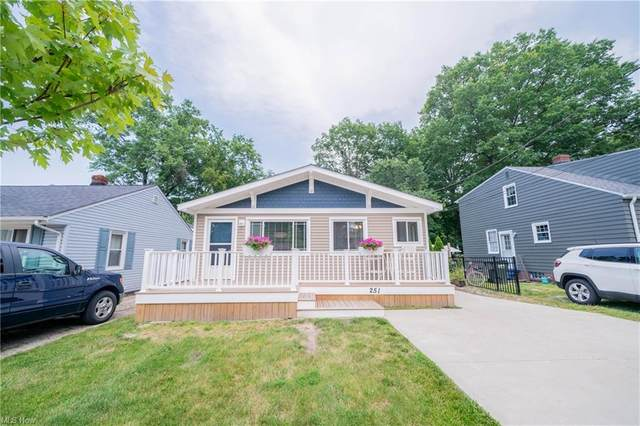 251 Lear Road, Avon Lake, OH 44012 (MLS #4296814) :: The Art of Real Estate