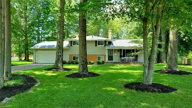 2948 Lydia Drive, Broadview Heights, OH 44147 (MLS #4297146) :: The Holden Agency