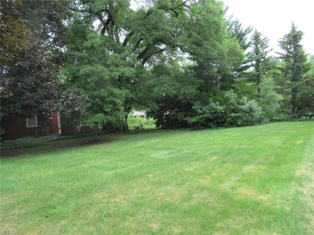 224 E Pine Street, Lisbon, OH 44432 (MLS #4297395) :: The Holly Ritchie Team