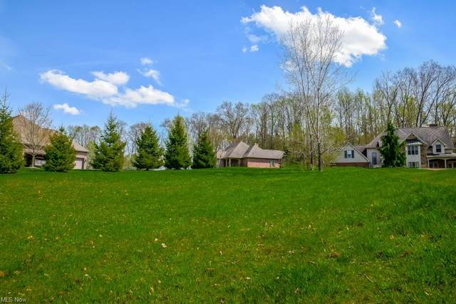 0000 Vineyard Avenue NW, Canton, OH 44708 (MLS #4297544) :: The Jess Nader Team | REMAX CROSSROADS