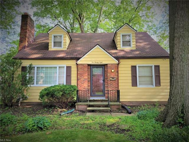 228 Columbia Avenue, Elyria, OH 44035 (MLS #4298474) :: Simply Better Realty