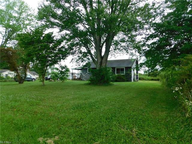 10660 Detwiler Road, Canfield, OH 44406 (MLS #4298727) :: The Kaszyca Team