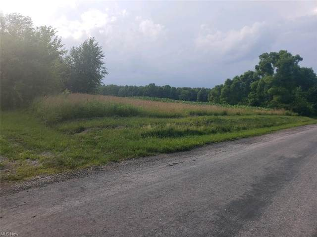 6053 State Route 86, Windsor, OH 44099 (MLS #4298765) :: The Art of Real Estate