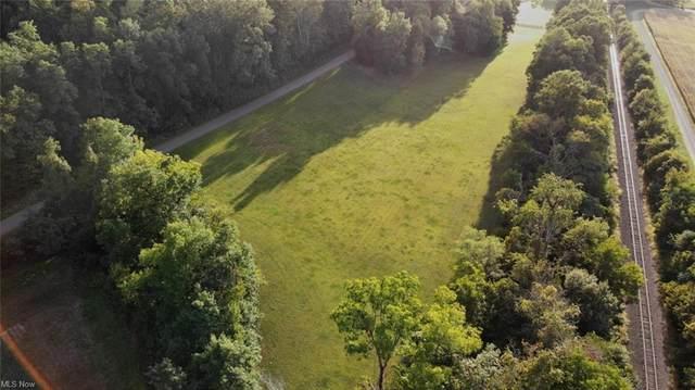 Narrows Road, Dresden, OH 43821 (MLS #4298949) :: TG Real Estate