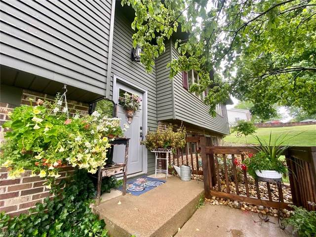 2655 Chardonn Road, Nashport, OH 43830 (MLS #4299378) :: The Holly Ritchie Team