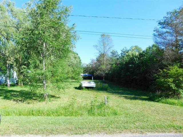 Owl Point, Roaming Shores, OH 44084 (MLS #4299548) :: The Art of Real Estate