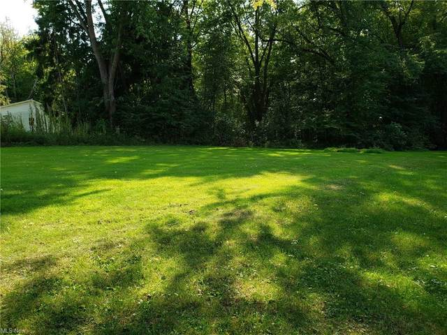 State Rt 344, Salem, OH 44460 (MLS #4299621) :: Select Properties Realty