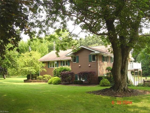 48134 State Route 14, New Waterford, OH 44445 (MLS #4299725) :: Jackson Realty