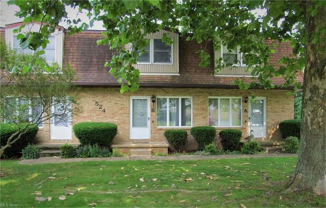 524 Continental Drive B, Salem, OH 44460 (MLS #4299799) :: Select Properties Realty