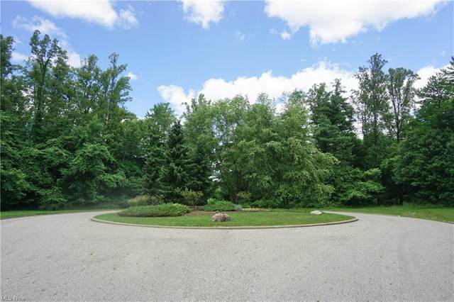 10 Stone Castle Trail, Salem, OH 44460 (MLS #4300403) :: Select Properties Realty