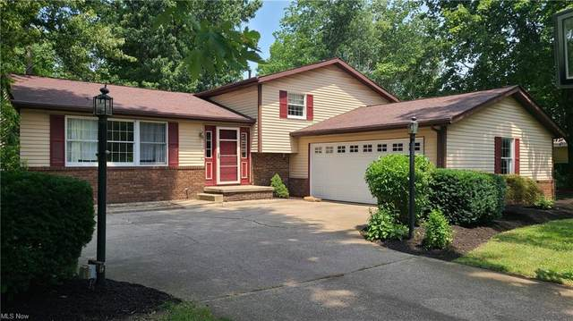 1615 Trotter Lane, Painesville, OH 44077 (MLS #4300453) :: Select Properties Realty