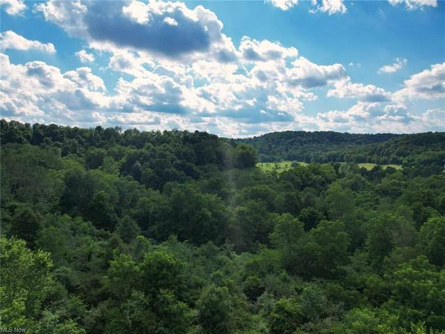 Wolf Road, Newcomerstown, OH 43832 (MLS #4300600) :: RE/MAX Trends Realty