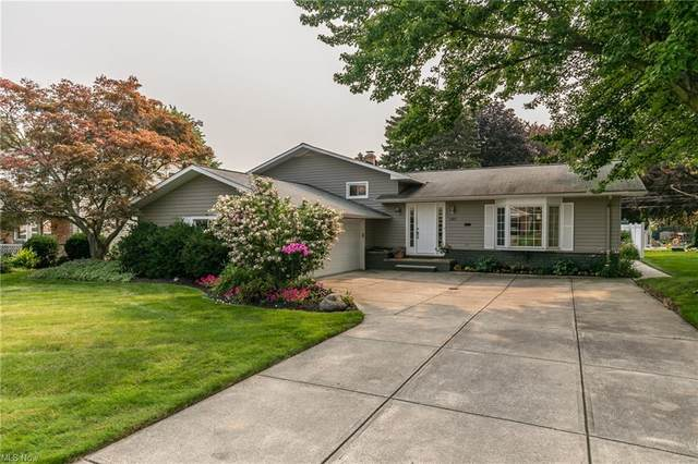 3485 Archwood Drive, Rocky River, OH 44116 (MLS #4300638) :: The Art of Real Estate