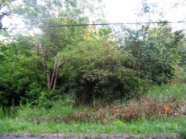 1542 Notman Road, Deerfield, OH 44411 (MLS #4301018) :: The Crockett Team, Howard Hanna
