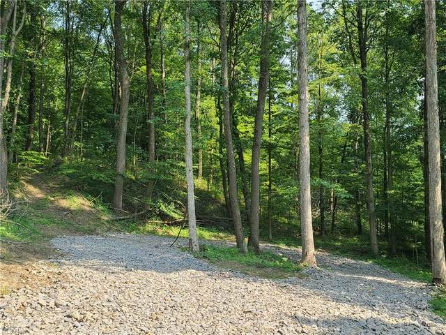 Township Road 306, Coshocton, OH 43812 (MLS #4302215) :: The Kaszyca Team