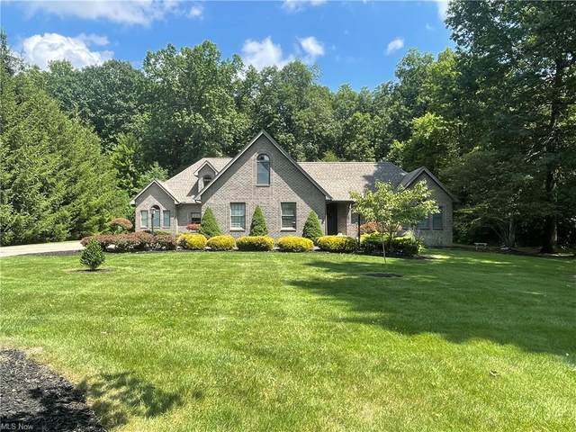 8271 Blue Heron Lane, Canfield, OH 44406 (MLS #4302296) :: TG Real Estate